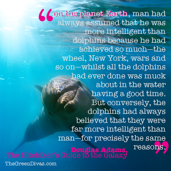 Douglas Adams quote about dolphins