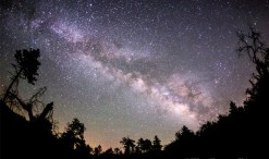 night sky for green divas post on light pollution