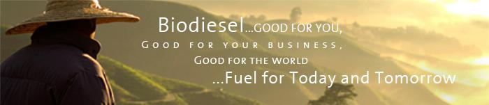 biodiesel header