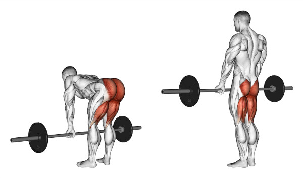 Are Romanian Deadlifts Hurting Your Lower Back? Follow These 9 ...
