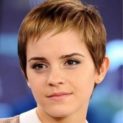 Light Brown Pixie with Streaked Tips