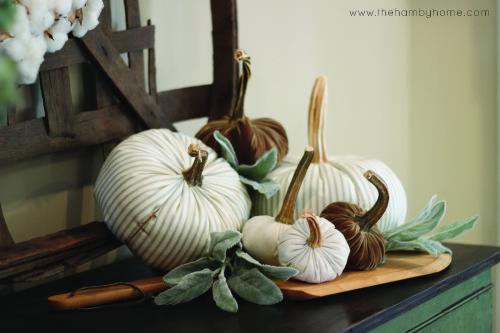 timewashed-fabric-pumpkin-vignette2