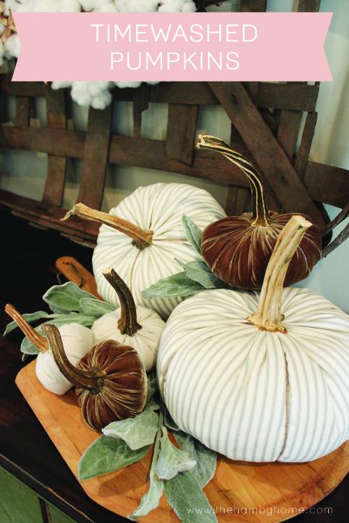 timewashed-pumpkin-vignette
