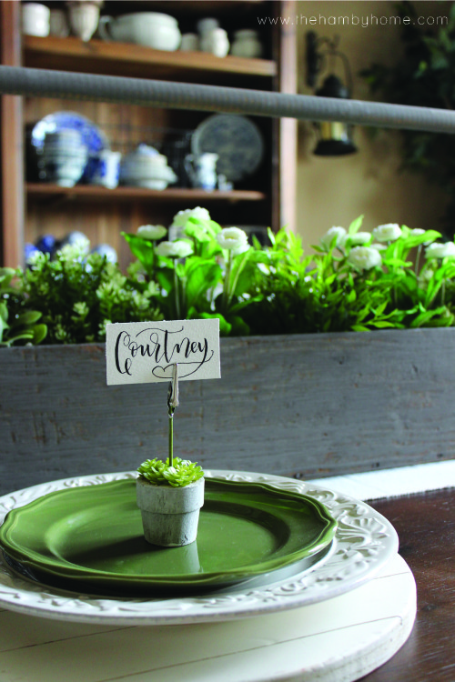 Succulent-Placecard-Holders6