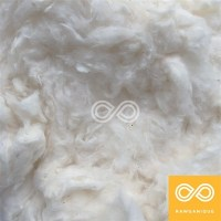 100% ORGANIC COTTON BATTING - FILL (USA) (PER POUND)