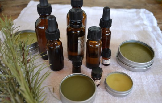 9 Herbal DIYs for the Holidays | Herbal Academy | Sneak in a little plant love by making herbal DIYs to gift to friends and family this holiday season. Here are 9 herbal DIYs to get you started!