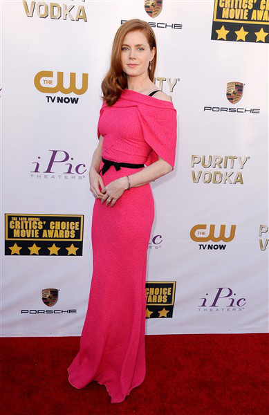 The He Said She Said Experience- 2014 Critics' Choice Movie Awards Best Dressed- Amy Adams in Roland Mouret