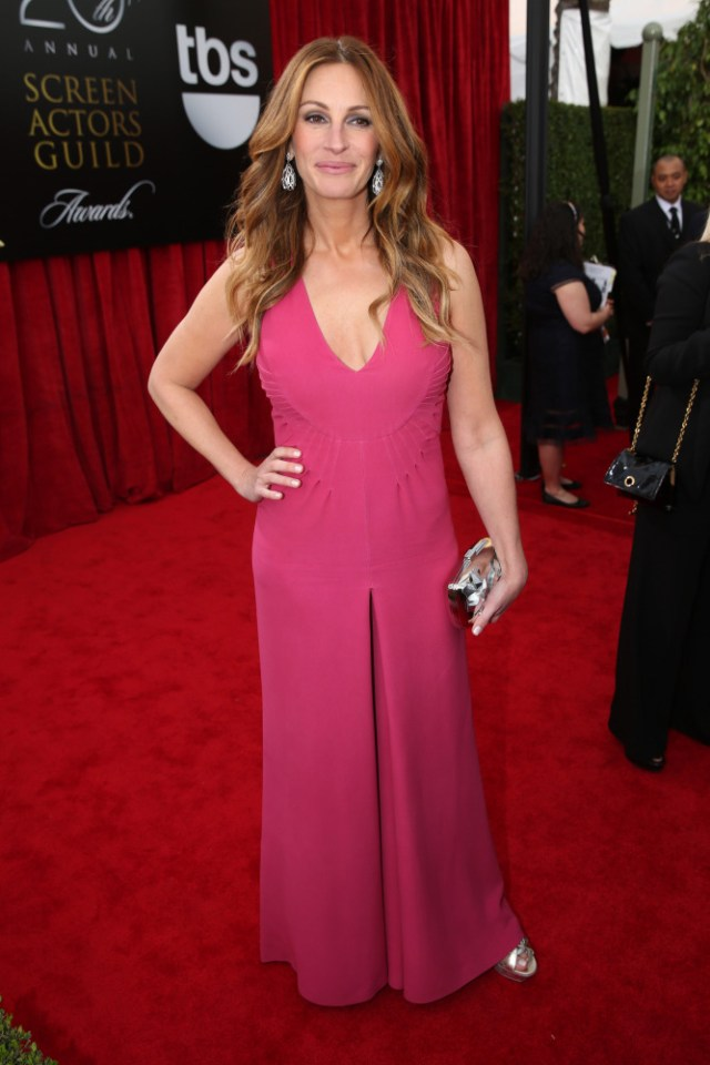 The He Said She Said Experience- 2014 SAG Awards Best Dressed- Julia Roberts in Valentino