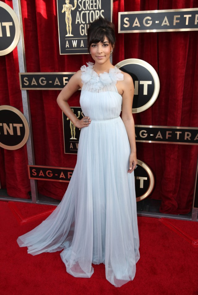 The He Said She Said Experience- 2014 SAG Awards Best Dressed- Hannah Simone in Marchesa