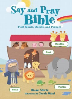 Say & Pray Bible by Diane Stortz Review
