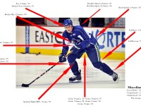 Sami Salo Injury Digest (via NucksMisconduct.com)