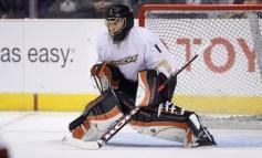 Anaheim Ducks November Status Report