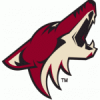 The Phoenix Coyotes: Things Get Messier In Glendale