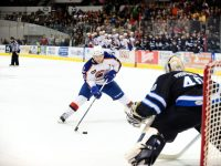 Photo Credit: Norfolk Admirals/John Wright