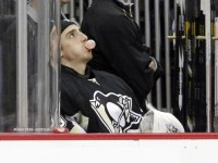 A playoff year spent on the bench hurt Fleury immensely. (Charles LeClaire-USA TODAY Sports)