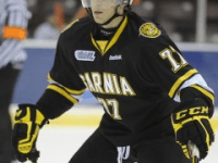 Anthony DeAngelo (Terry Wilson/OHL Images)