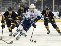 Mike Santorelli should be kept on the watch-list for now as he could increase his offensive output with added ice-time. (Timothy T. Ludwig-USA TODAY Sports)