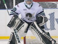 Alex Nedeljkovic possesses the poise and talent necessary to be a successful professional goalie. (Renata Laverty/Plymouth Whalers)