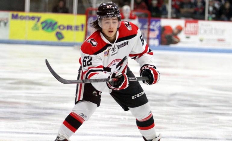 Prospect to Watch: Brandon Montour