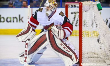 Arizona Coyotes 2016-17 Season Preview
