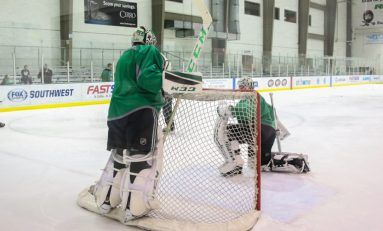 The Dallas Stars Most Important Area of Need