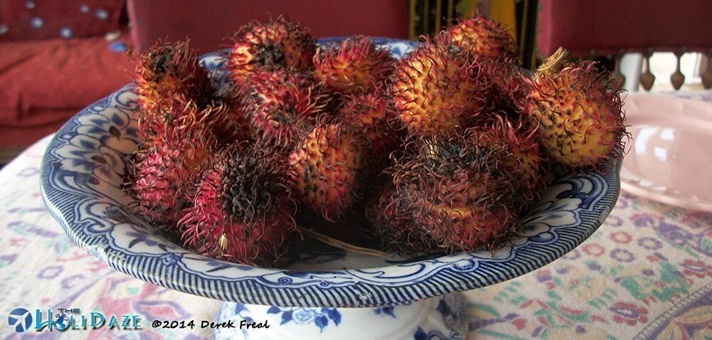 Rambutan in Costa Rica but natively from Indonesia, making it one of the amazing, weird and exotic fruits of Southeast Asia