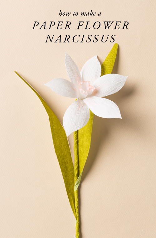 learn to make a paper flower narcissus