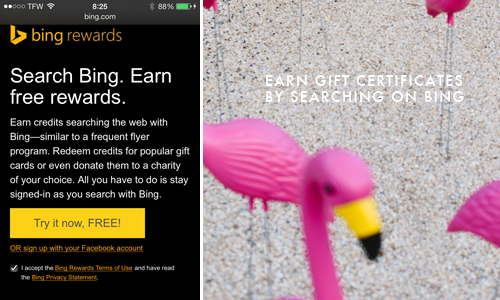 Bing rewards program