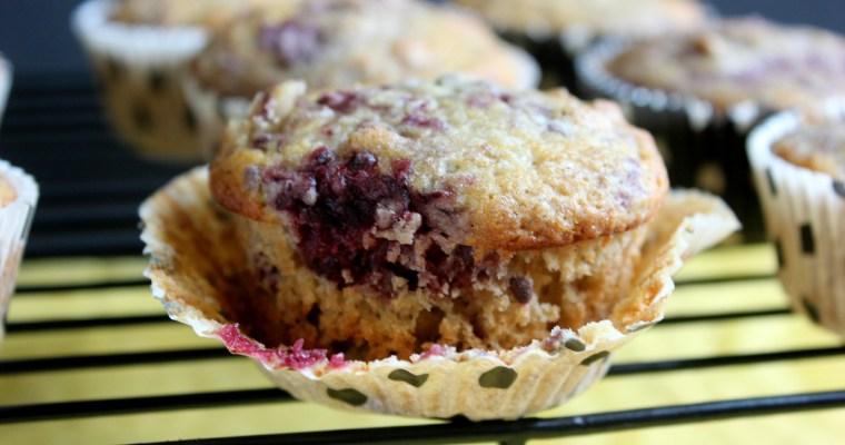 I'm the Muffin (Wo)Man!: Boysenberry Black Walnut Muffins