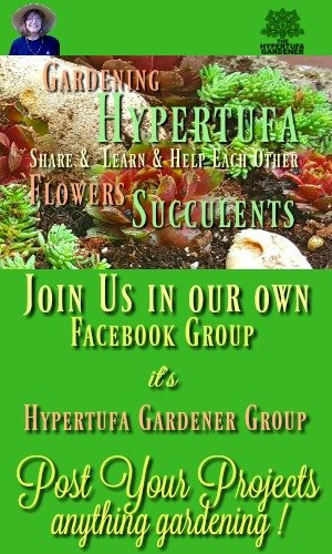 Join the Facebook Group and post your hypertufa projects. It's the new Hypertufa Gardener Group. Come join us and let's see your pots and planters. Or your flowers and succulents.