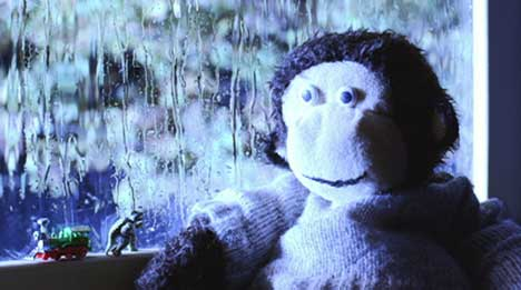 Monkey sits in the window at beginning of SEAT Altea TV ad