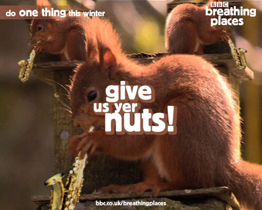 Give us your nuts