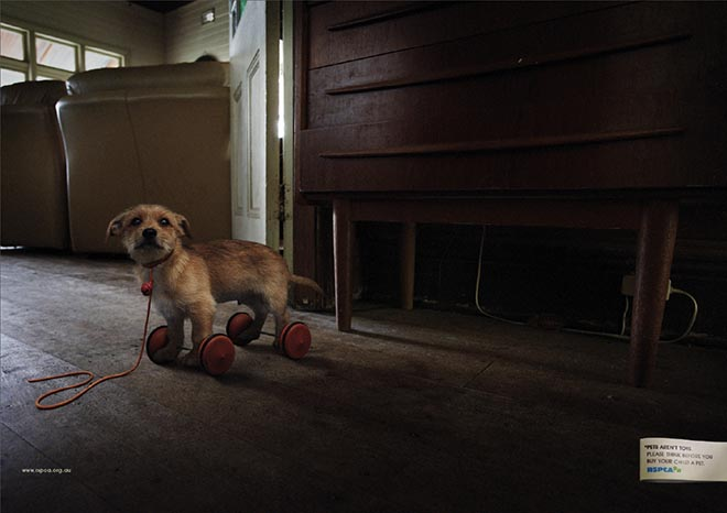Dog as toy in RSPCA print advertisement