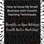How to Grow My Small Business with Growth Hacking Techniques, growth hacker definition,growth hacking guide, growth hacking book,growth hacking training,definition growth hacker