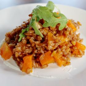 Farro and Butternut Squash Salad with Goat Cheese, Walnuts, and Arugula
