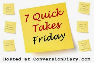 http://www.conversiondiary.com/2013/12/7-quick-takes-about-i-have-no-freaking-clue-because-i-have-not-written-them-yet.html