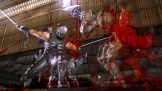 NinjaGaidenSigma2Plus_MainPic