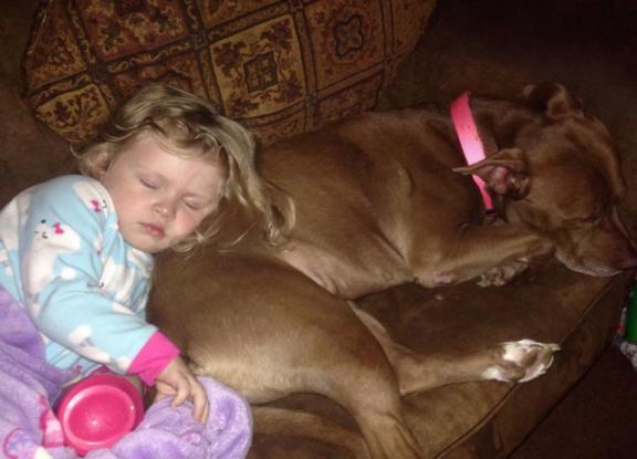sleeping on the dog