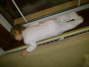 sleeping on the window sil