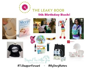 giveaway, The Leaky Boob, international, baby products, nursing, breastfeeding