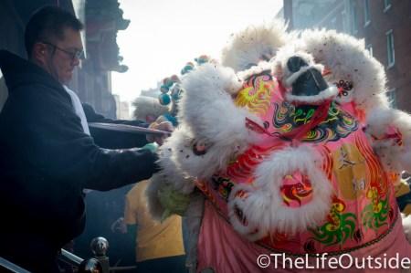 dragons eating lettuce chinese new year philadelphia