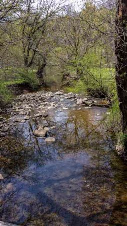 brandywine creeks