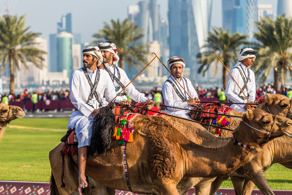 Men riding camels in Qatar during the Qatar National Day. Nawasi is an exhibition focusing on the country's horse, camel and falcon culture.
