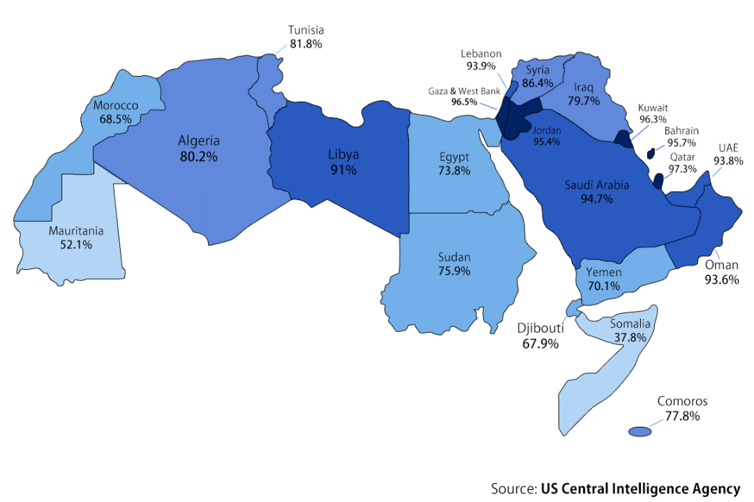Arab Literacy Rate - Map