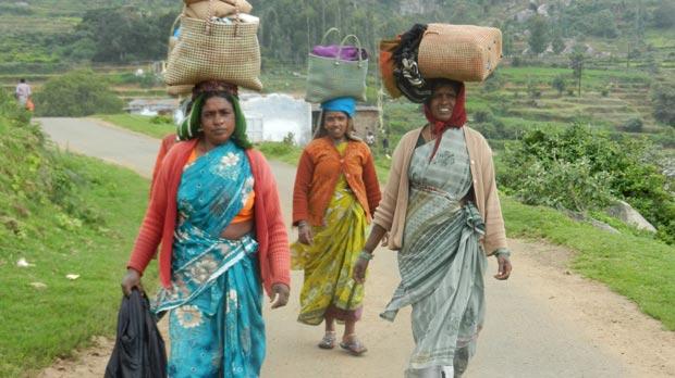 Ladies of the Kokkal village.