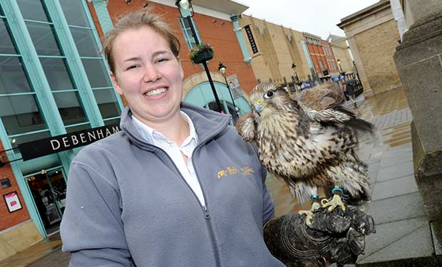Holly Raper from East Riding Pest Control with her Greysker Falcon.