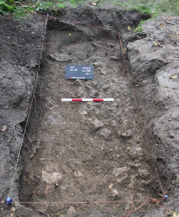The Newport test dig.