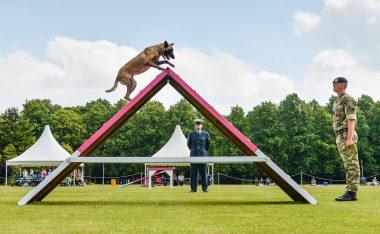 Raf Waddington Duo Among Top Dogs At Military Police