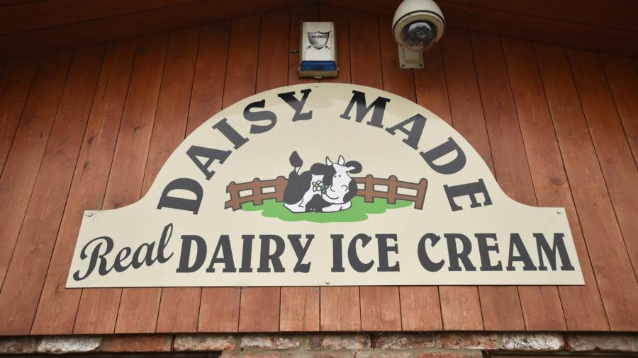 Daisy Made is making a significant investment to boost business. Photo: Steve Smailes