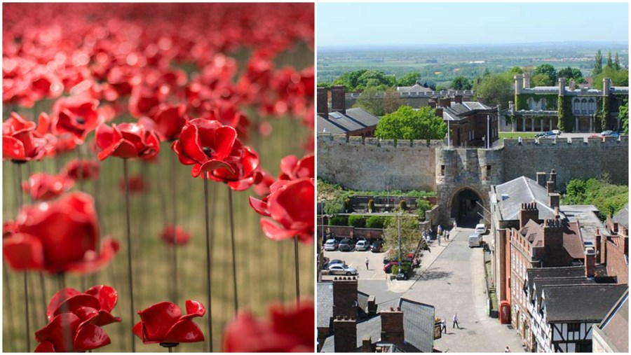 The Poppies: Wave is heading to Lincoln this week.